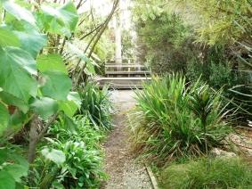 The Native Garden